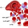اجزای خون (مقاله تحقیق دانش آموزی)